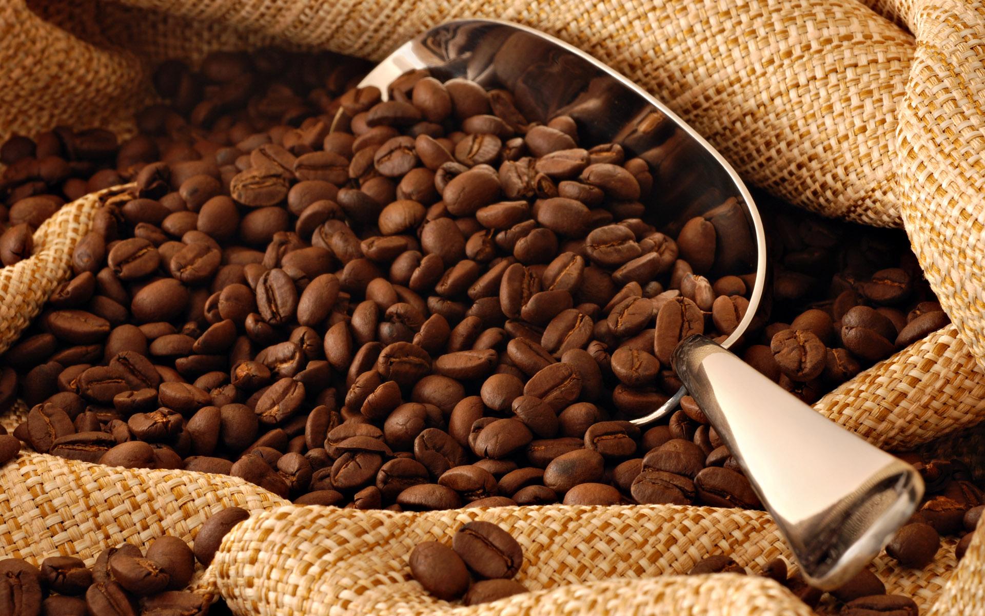 أفضل مطحنة قهوة يدوية
